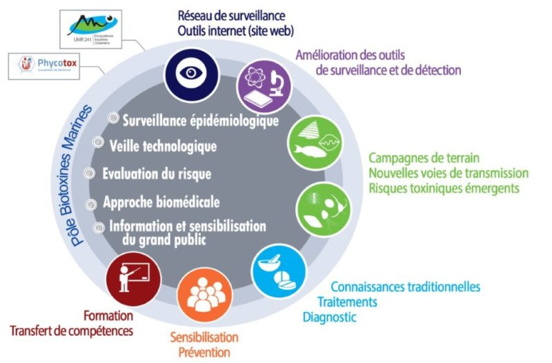 Figure 1: Approche intégrée pour la surveillance et la gestion du risque ciguatérique en Polynésie française - © ILM