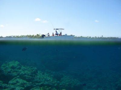IMG-20 Campagne de pêche à Fakarava